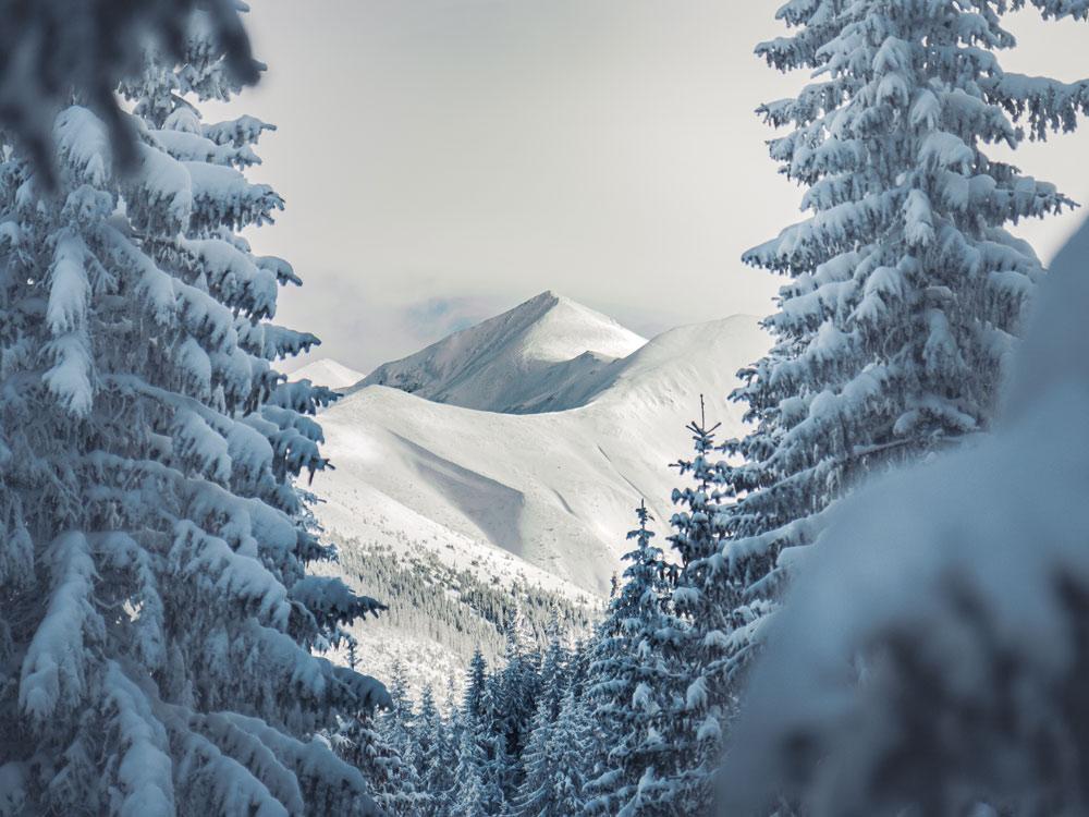 Tatrzański Park Narodowy zimą